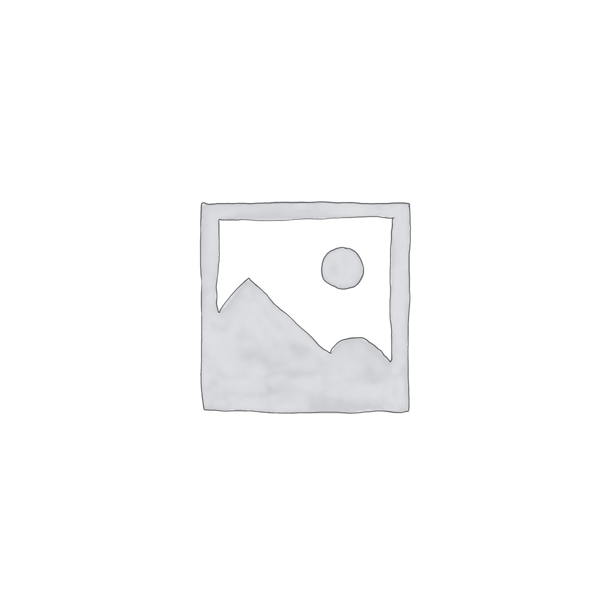 Filtru Aer Primar – Schaeffer